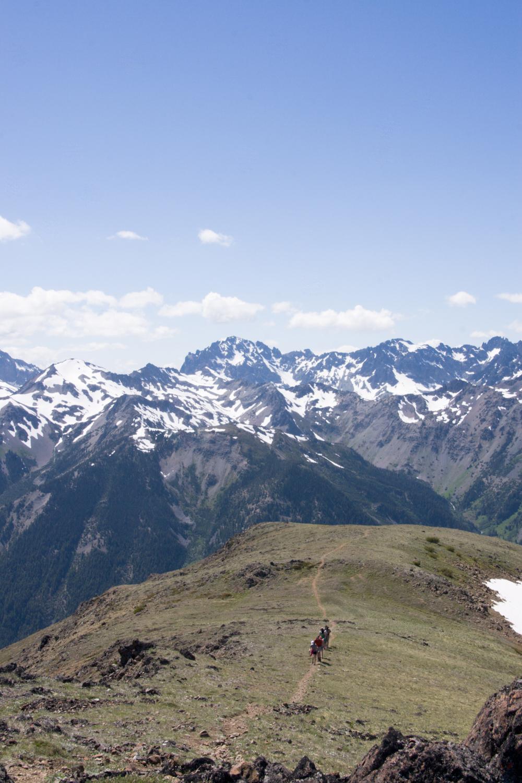 marmot-pass-trail-1